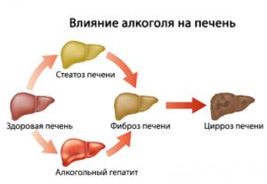 влияние алкоголя на печень