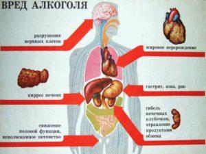 вред алкоголя на организм человека
