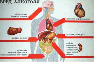 Serdechnaja sistem